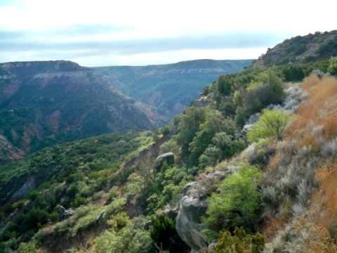 Stuart Hinds: PETRA - Canyons Drive.mov