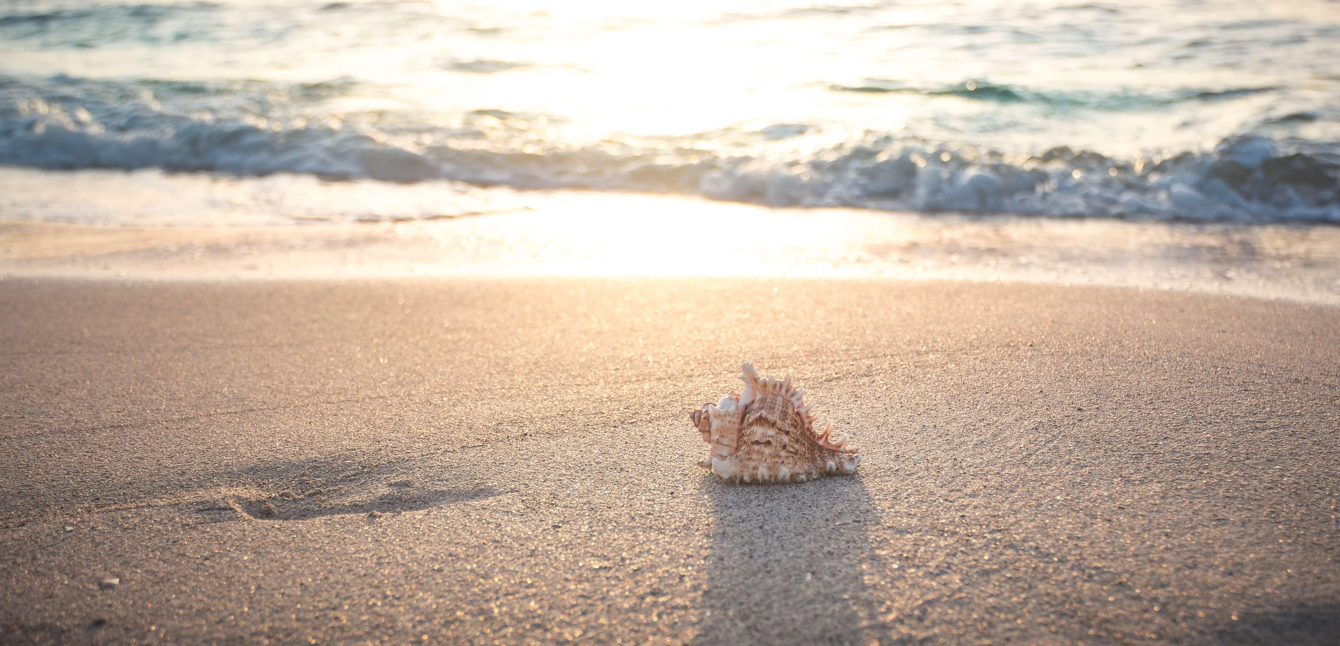 Sea noise (public domain) at the beach of Kolka, Latvia - my